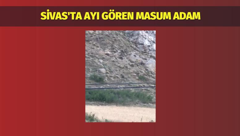 Sivas'ta Ayı Gören Masum Adam