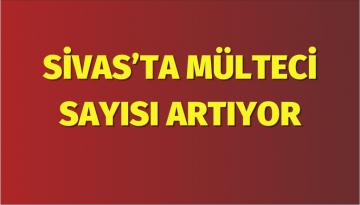 Sivas'ta Mülteci Sayısı Artıyor